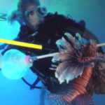 Lionfish speargun licences limited to 400
